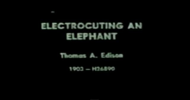 edison-electrocuting-an-elephant